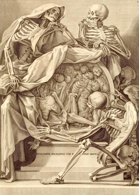 anatomy_450