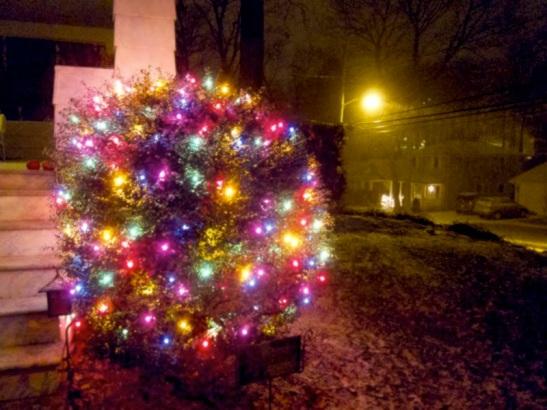 Front Bush Christmas Lights Snow_sm